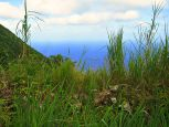 Upper Hells Gate Land Saba Island Properties