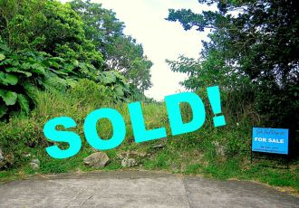 Sold Upper Hell's Gate Land