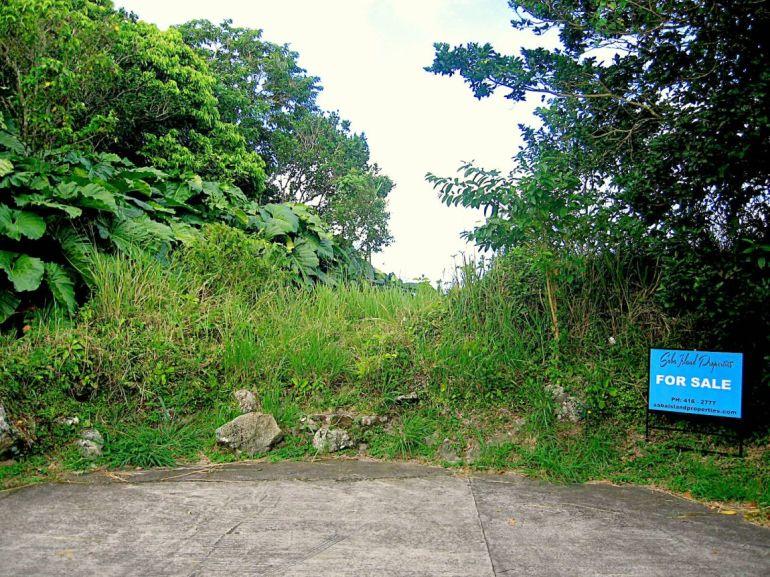 Upper Hells gate Land For Sale Saba