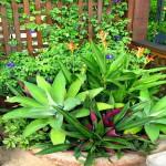 Garden Planter Design