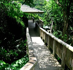 Haiku House Entrance Saba