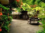 Scout's Place Interior Garden Saba