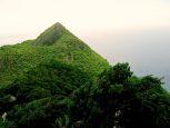 Troy Hill Lots Saba