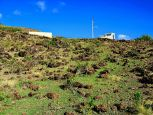 Flat Point Saba Island Properties Dutch Caribbean