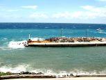 Fort Bay Harbor Saba