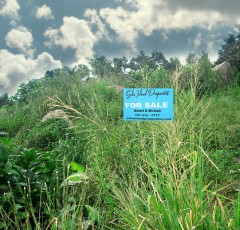 Upper Hell's Gate Land For Sale Saba