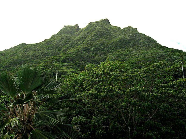 Elsie's Villa Mt. Scenery Saba