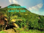 Windwardside Land For Sale Under Moses