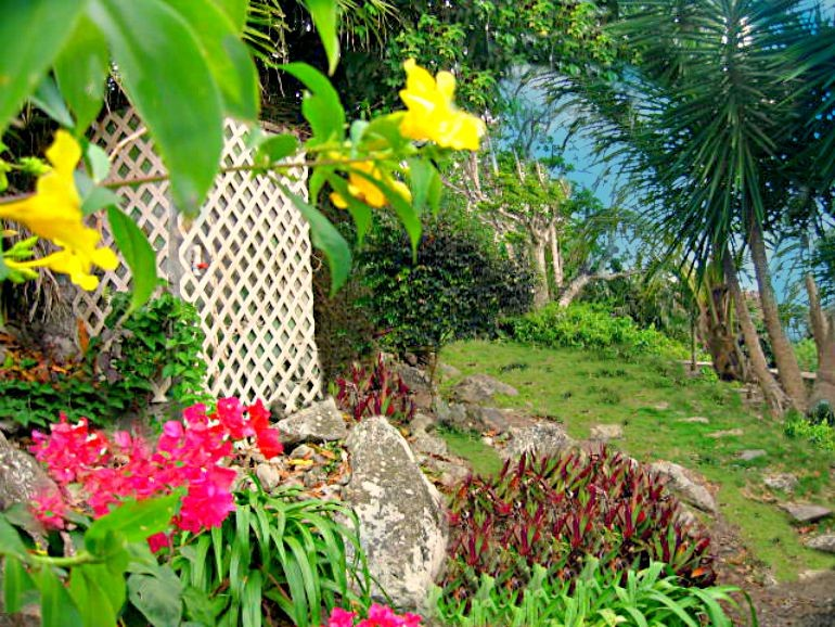 Althea Cottage Saba Windwardside