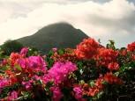 Mt. Scenery Saba Dutch Caribbean