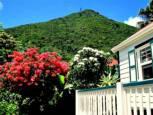 Hibiscus Cottage - For Rent - Albert & Michael - Saba Island Properties