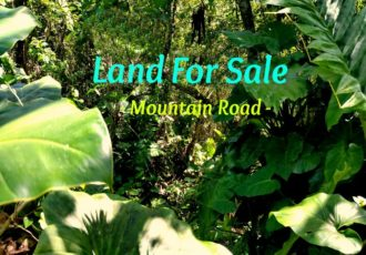 Mountain Road Land For Sale Saba