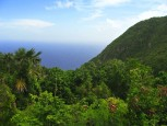 Water View Saba Dutch Caribbean