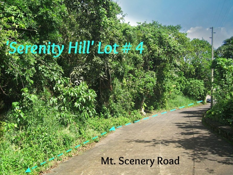 Serenity Hill Land For Sale Saba