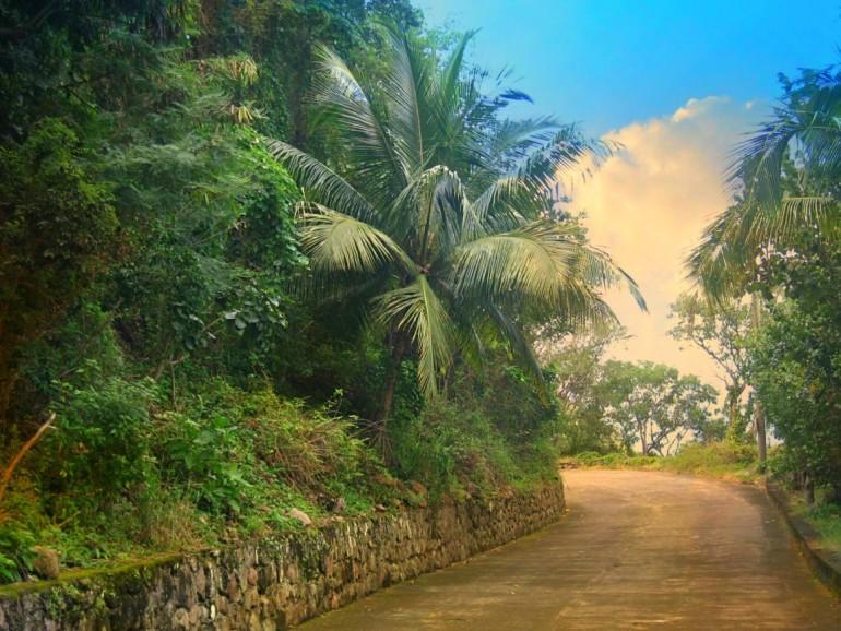 Wells Bay Road Saba