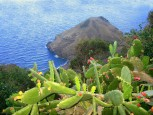 Constant Sea Breeze Cottage Rental Saba