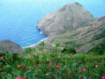 Island View Cottage Saba
