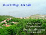 Dushi Cottage Saba For Sale