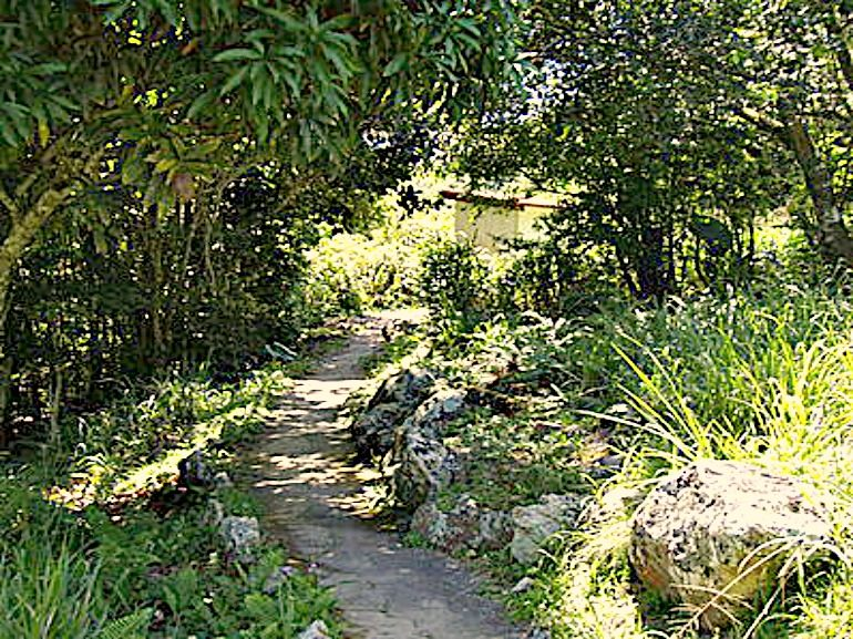 Mount Scenery Cottage Path Saba