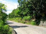 Windwardside Land For Sale Albert & Michael Saba Island Properties