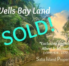 Wells Bay Land Sold - Albert & MIchael - Saba Island Properties 416 - 2777