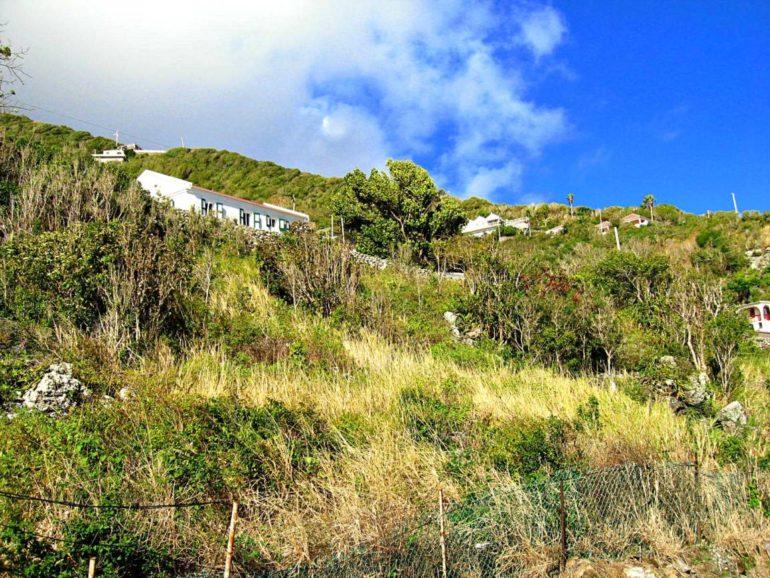 Diana's Cottage - Albert & Michael Saba Island Properties