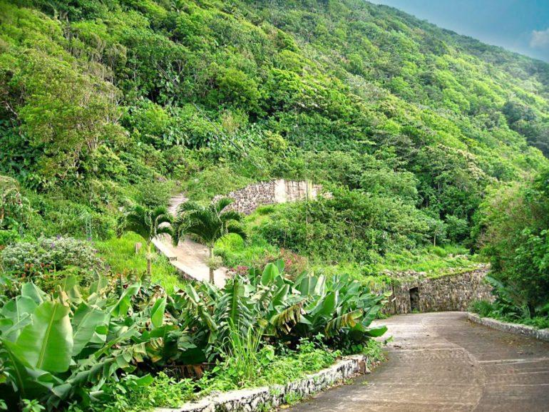 2 Mount Scenery Road Lots For Sale - Albert & Michael - Saba Island properties