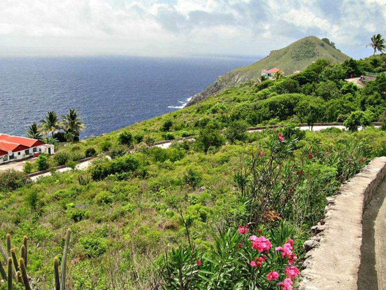 Lower Hell's Gate Land - Albert & Michael - Saba Island Properties