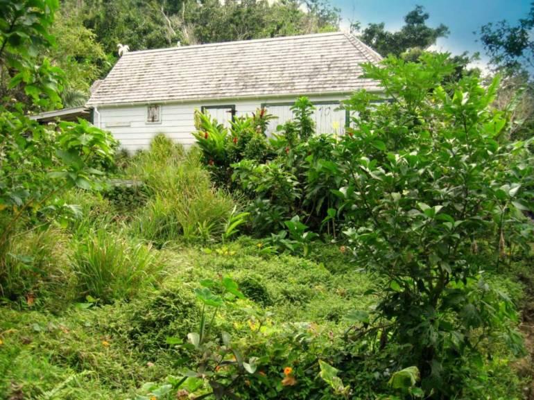 Lnd at Rendez-Vous - Albert & Michael - Saba Island Properties
