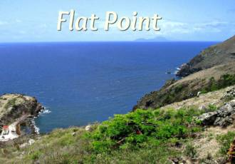 Flat Point Land - For Sale - Albert & Michael - Saba Island Properties