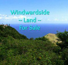 Windwardside Land - For Sale - Albert & Michael - Saba Island Properties