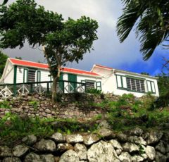 Sea View Cottage - For Rent - Albert & Michael - Saba Island Properties